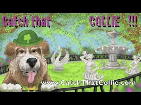 Catch that Collie Promo