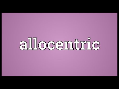 Header of Allocentric