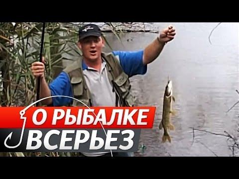 На поплавочную удочку рыбалка на
