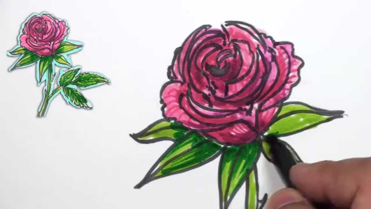 how to draw a simple rose with stem
