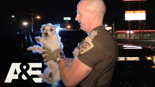 Live PD: Puppy Pals (Season 3) | A&E