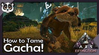 How to Tame Gacha! | ARK: Extinction