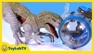 Jurassic World Toys Indominus Rex vs Ankylosaurus Play Set & Play Doh Surprise Dinosaur Eggs