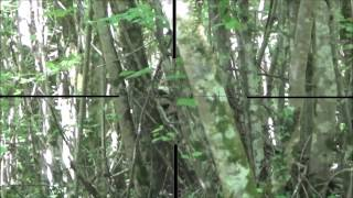 Sniper Airsoft N°2 - Scope Cam HD - Bolt L96 450 FPS - Monster
