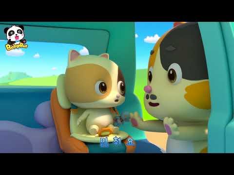 고양이 안전승차동요 안전벨트 꼭꼭해 안전교육송 베이비버스 인기동요 BabyBus