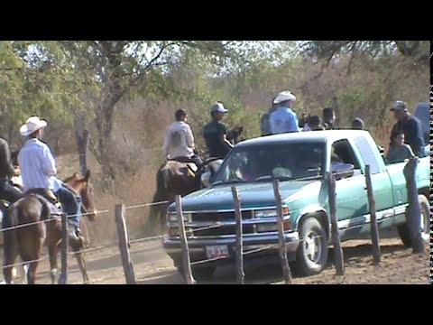 Carreras de caballos en el año nuevo 2011 en el carrizal, alamos.MPG