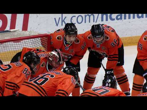 25.01.18 / Tigers - Dynamo St.Petersburg / Highlights