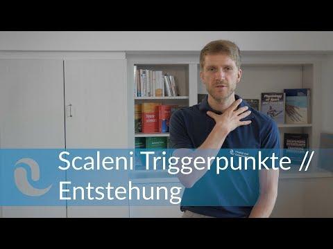 Scaleni Schmerzen - Triggerpunkte & Aktivierung