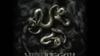 Meshuggah - The Paradoxical Spiral