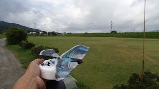 Avitron v2.0 RC Bionic Flying Bird with swallow