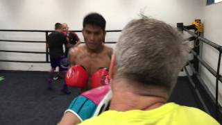 Nietes, Magsayo, Villanueva Punch Mitts with Freddie Roach