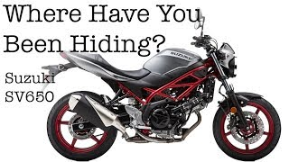 Where Have You Been Hiding? Suzuki SV650 Motorcycle Test Demo Review Ride