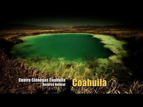 10 | Esto es México: Estrellas del Bicentenario | COAHUILA