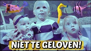 "DiT BESTAAT ""toch"" ECHT! 😜 ( Sea Life) 