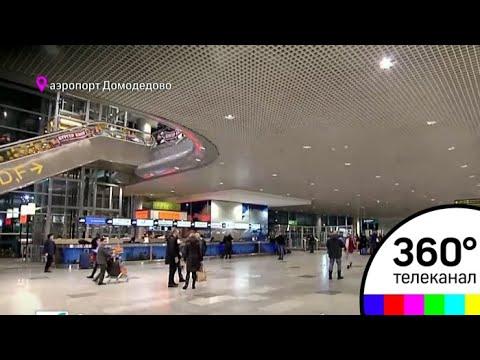 После крушения Ан148 в аэропорту «Домодедово» началась внеплановая проверка