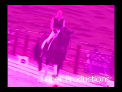 Equestrian ~ BloodSugar {Dedicated To ShilottxXx} 