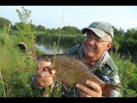 Роо рыболовы самарской области самарафишинг