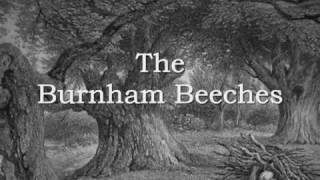 Burnham Beeches,    The Song