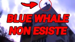 BLUE WHALE NON ESISTE