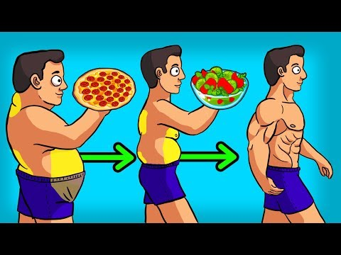 3 BEST Diets to LOSE WEIGHT & BELLY FAT