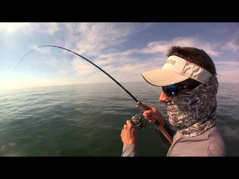 Flats Factor Charters- Sarasota Fishing