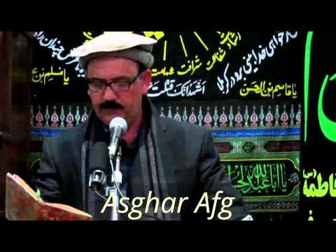 Farhad Afshar 2013