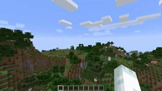 Minecraft: 2014 Review/Channel Update! (Lets Talk!)