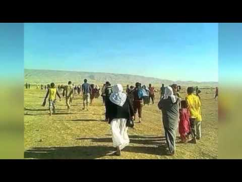 Son of Yazidi community leader on the fate of the group