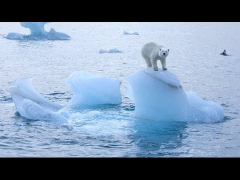 HD Glacier Calving Ever! how we destroy the world. greenhouse effect GHG and pollution.