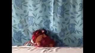 Tansen Nursing School (TNS) puppet show for pediatric nursing in Nepal