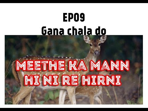 Gana Chala Do- Star Boy Weekend-Misheard Lyrics-Meetha Ka Mann