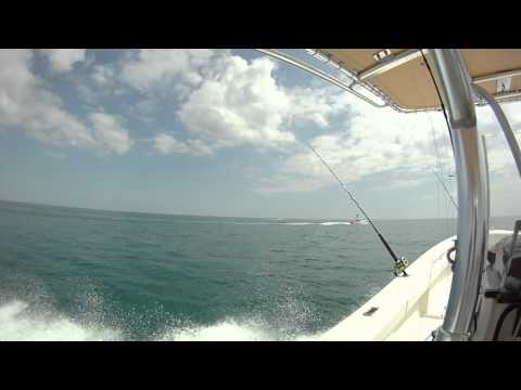 Port Canaveral Fishing Charter, Playing with Friends Offshore Cocoa Beach Florida