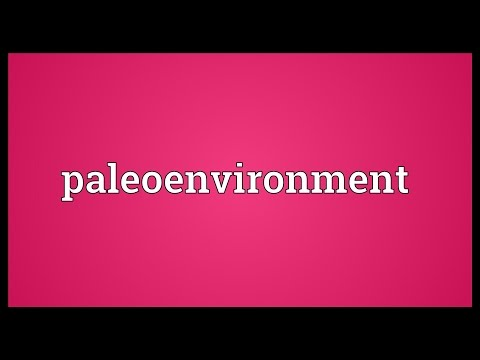 Header of Paleoenvironment