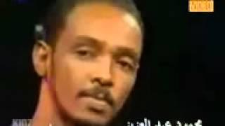 Mahmoud abdel Aziz /   محمود عبدالعزيز  _ الريــدة