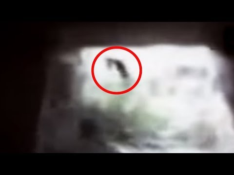 5 Witches Caught On Camera & Spotted In Real Life! #2