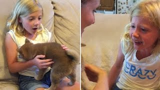 Girl Brought To Tears As She Receives Dog For Birthday