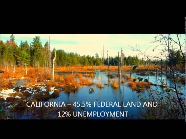 Maine's proposed National Park: Real Facts - Real Fears