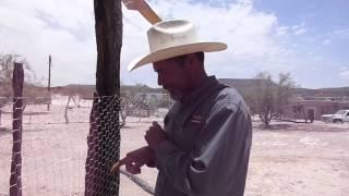 TESTIMONIO DE HUERTOS FAMILIARES SIETE ZACATES 2014