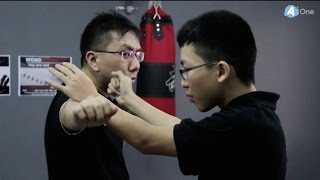Jeet Kune Do - Switch Flipper Training - MyAOne.my