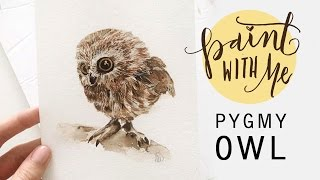 PAINT WITH ME: Cute Watercolour Pygmy Owl (Watercolor Painting)