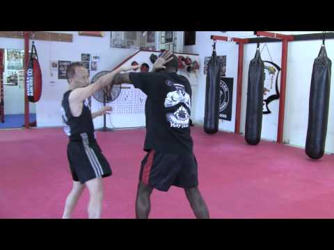 Muay Thai Techniques Striking Video Demo Image 1