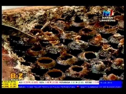 Madu Kelulut Syamille Malaysia Stingless Bee Honey