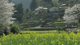 神山アーカイブス「KAMIYAMA NATURE」