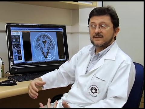 O Cérebro e a Neurociência