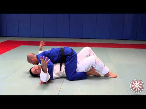 Mount Survival and Mount Elbow Escape (Jiu Jitsu Univ Ch 3 and 7-1) Image 1
