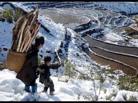 Vietnam Snowfall & Strange January Pacific Typhoon | Mini Ice Age 2015-2035 (43)