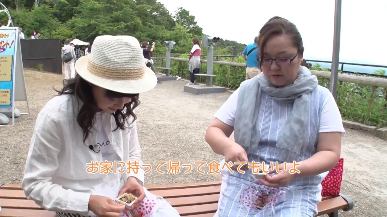 菊池麻衣子の画像 p1_8