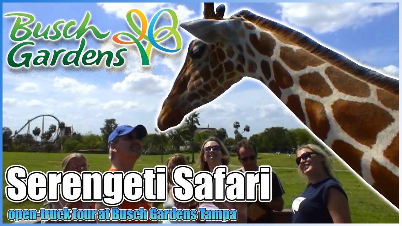 Busch Gardens Serengeti Safari 2004 Tampa Florida Zoo And Theme Park Youtube