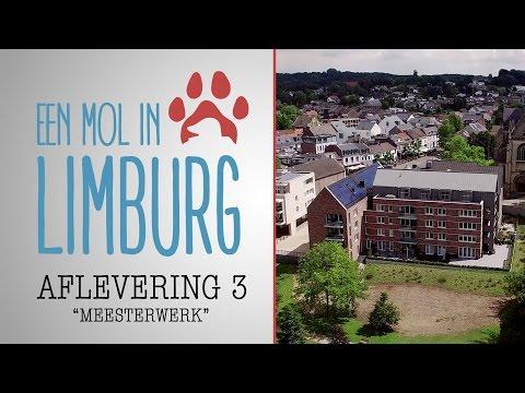 EEN MOL IN LIMBURG - Aflevering 3: 'Meesterwerk'