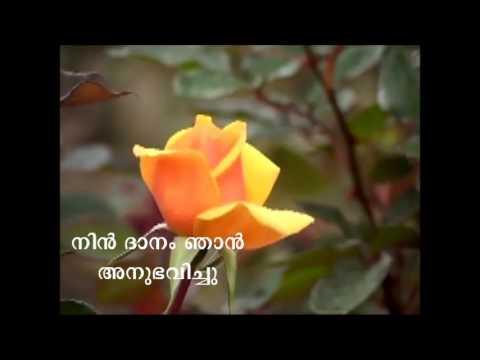 Nin Dhanam Njan Anubhavichu..... video